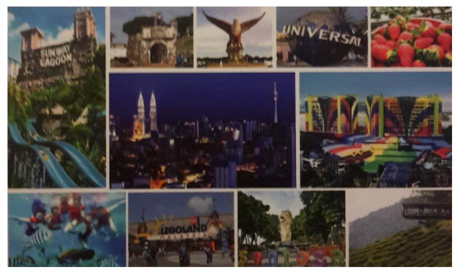 Sai Rafflesia Agency Travel Tour